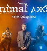 Animal ДжаZ презентует новейшую концертную программу #электроакустика