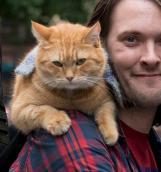 Джеймс Боуэн. «Уличный кот по имени Боб»: хроника духовного исцеления