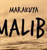 Бесплатная путевка на Малибу от группы MARAKUYA