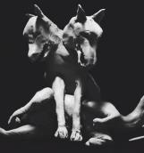 PJ Harvey представила новый сингл «Guilty»